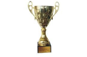 全国市政金杯奖
